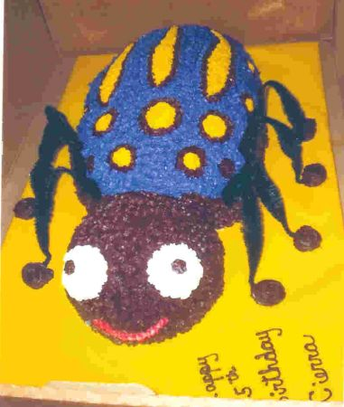 Spider Bug Childrens Cakes