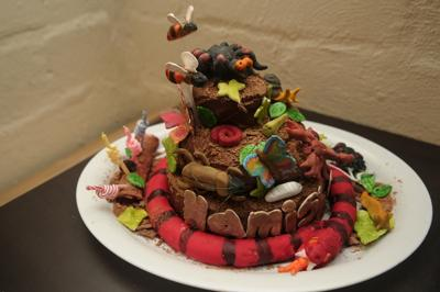 Bugs, Spiders and Snake Garden Cake