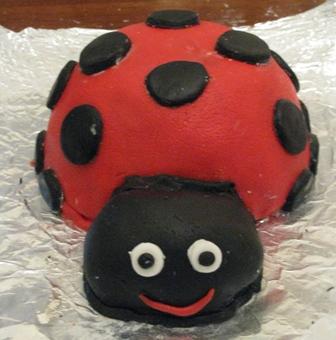 Lady Bug Birhtday Cake