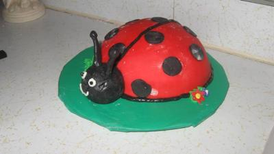 Ladybug Cake for First Birthday