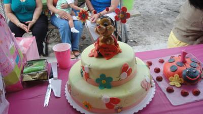 My Little Love Bug Cake