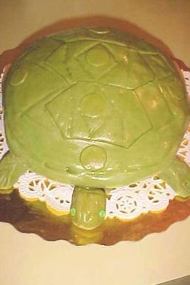 Desert Turtle Cake