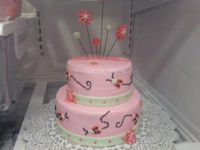 Birthday Cake Ideas  Women on Two Tier Ladybug Cake