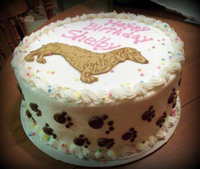 Dachshund Birthday Cake