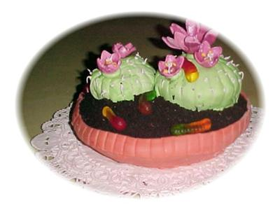 Potted Cactus Flower Cake